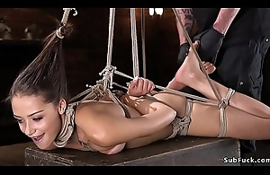 Hogtied small tits dreamboat on the back burner